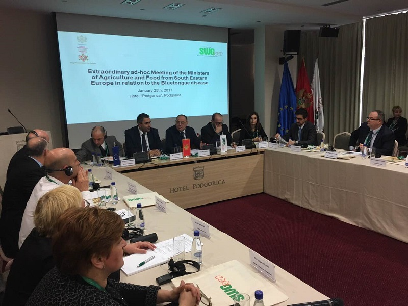 1. Ad-hoc Meeting of the Ministers in Podgorica 2017