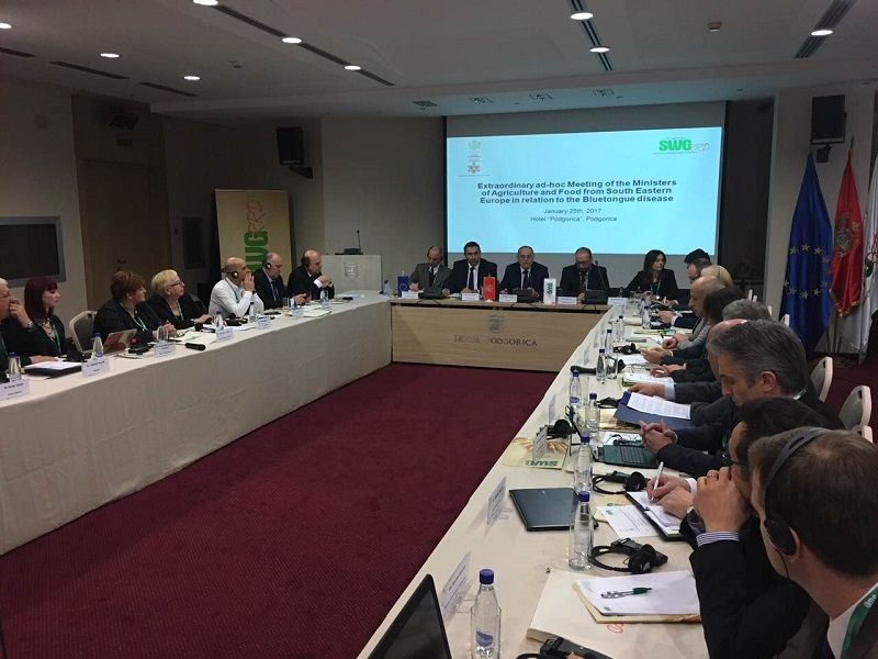 3. Ad-hoc Meeting of the Ministers in Podgorica 2017